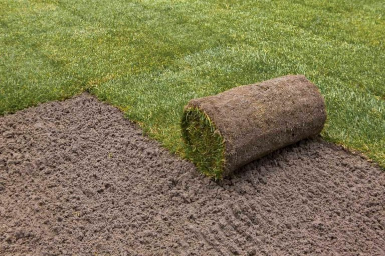 Turf Laying Services 1